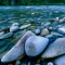 tumbled-rocks-in-a-river-bed